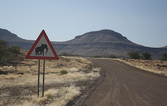 side-by-side_elephant-sign.jpg